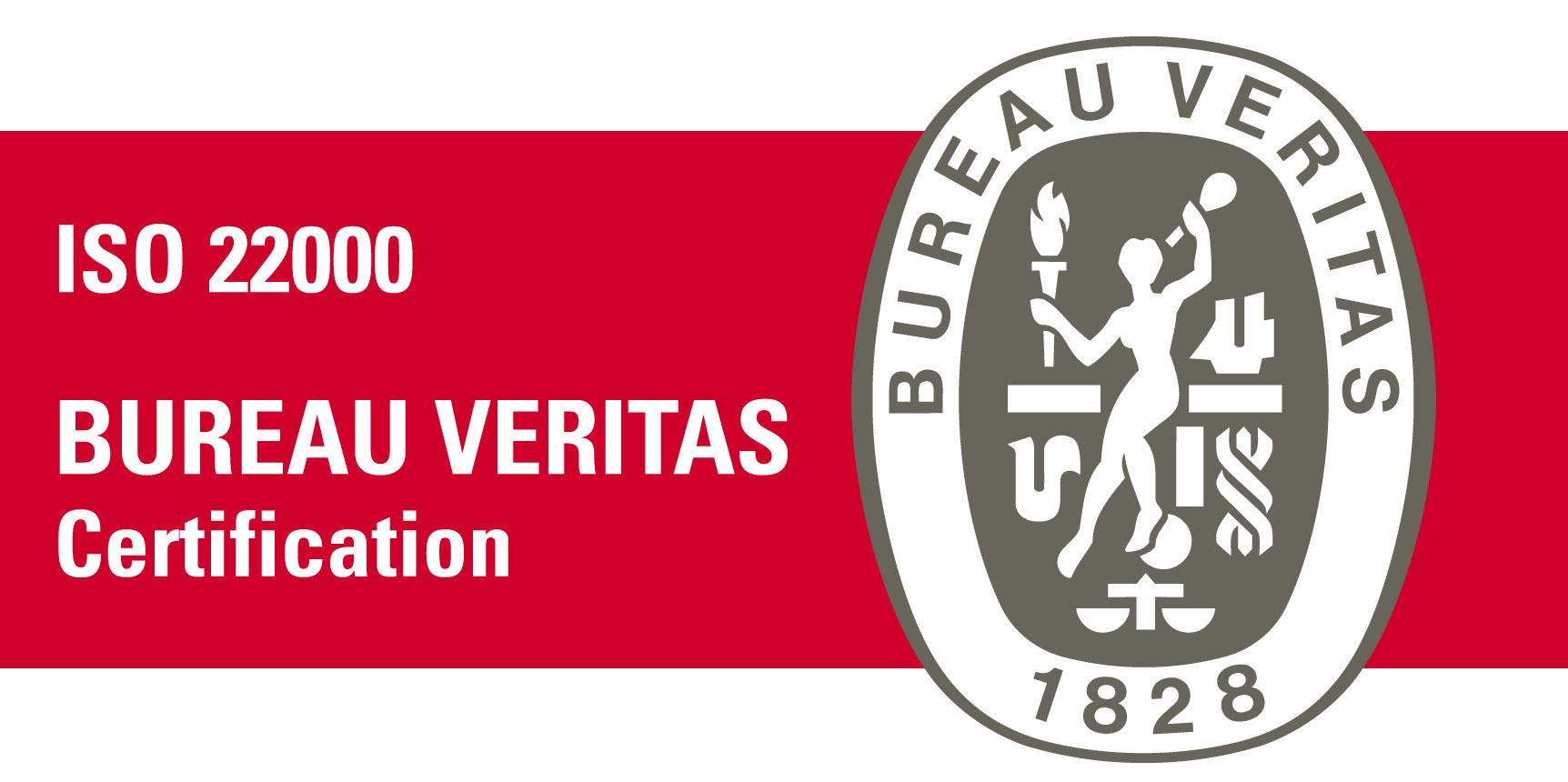 logo BV 22000